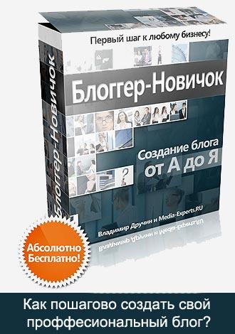 "Курс Владимира Дручина ""Блоггер-Новичок"""